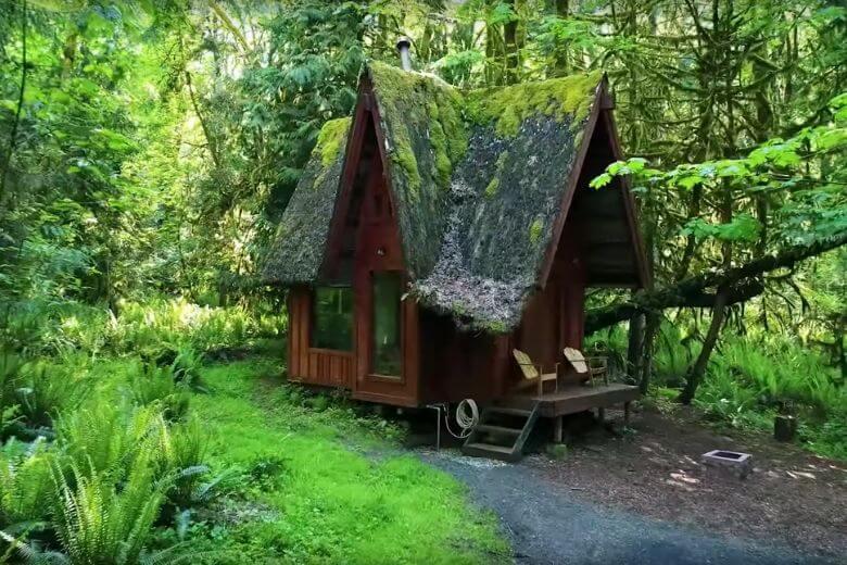 foresta incantevole casa